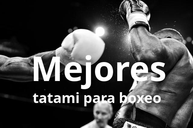 Los mejores tatami para boxeo del mercado en 2021 1